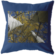 Load image into Gallery viewer, Aspens Look Up To Sky Pillow