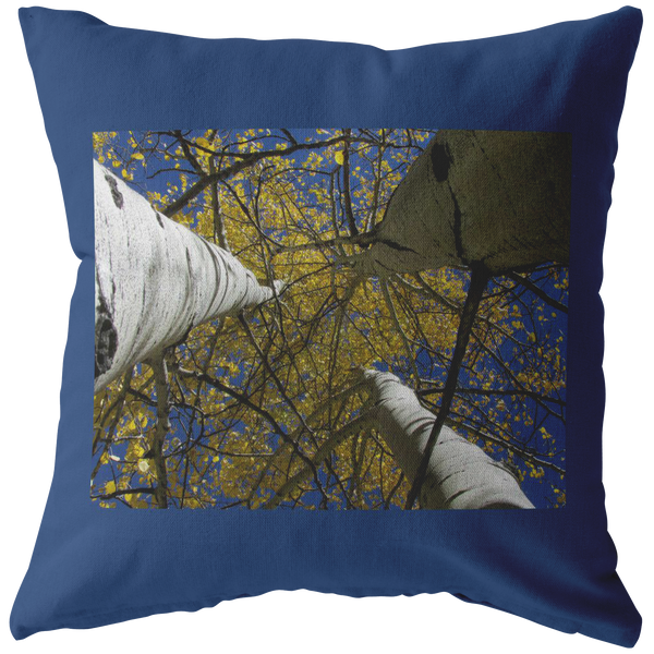Aspens Look Up To Sky Pillow