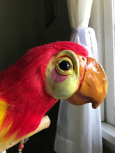 Load image into Gallery viewer, Jose replica from Enchanted Tiki Room