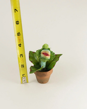Load image into Gallery viewer, Mini Audrey 2