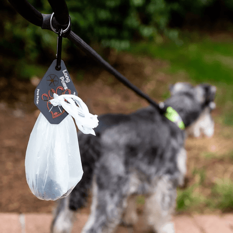 Pet poo bag holder
