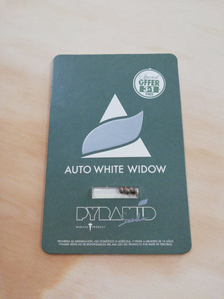 Auto White Widow 3+1 - De La Buena Growshop
