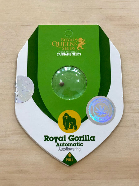 Royal Gorilla Auto X1
