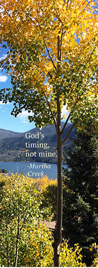 God's Timing. (bookmark)