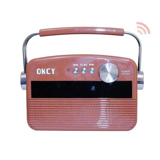 Saregama Carvaan Portable Digital Music Player - lallntop.com