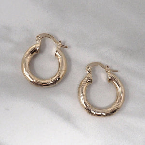 Mini Gold Plated Hoop Earrings