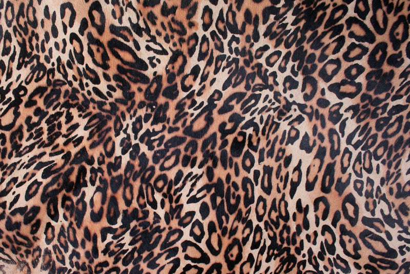 The Top Fashion Trends Of F/W 2019 - Wild Animal Print