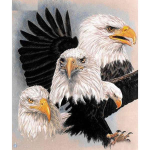Eagle in Action 5D DIY Paint By Diamond Kit