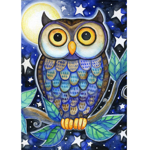 Owl 5D DIY Paint By Diamond Kit