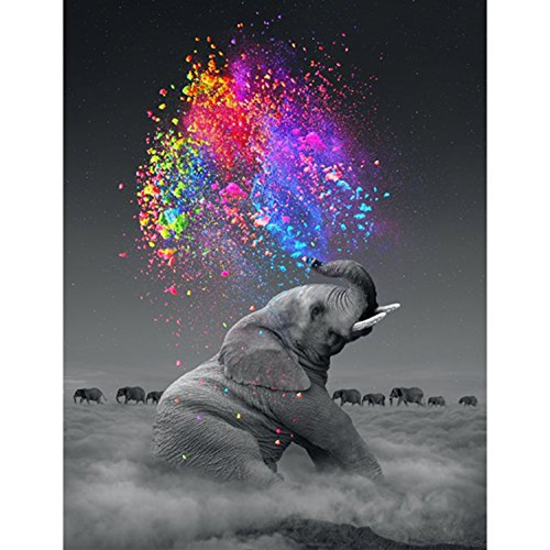 Elephants and Rainbow 5D DIY Paint By Diamond Kit