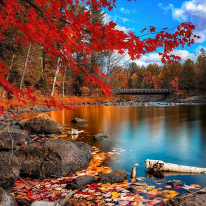 Maple Leaf Landscape 5D DIY Paint By Diamond Kit
