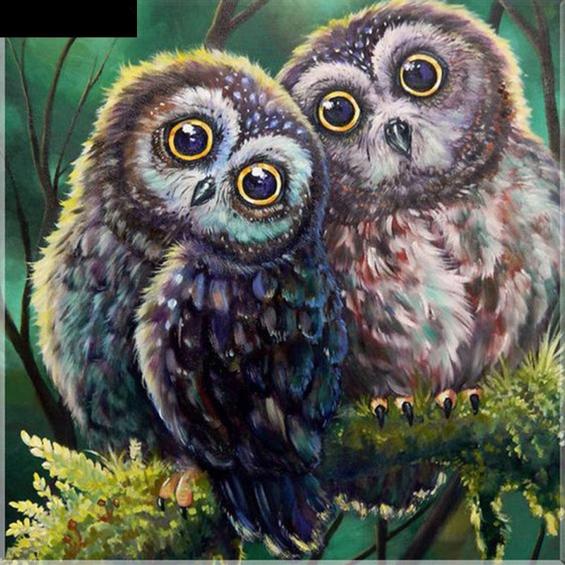 Double Owl 5D DIY Paint By Diamond Kit