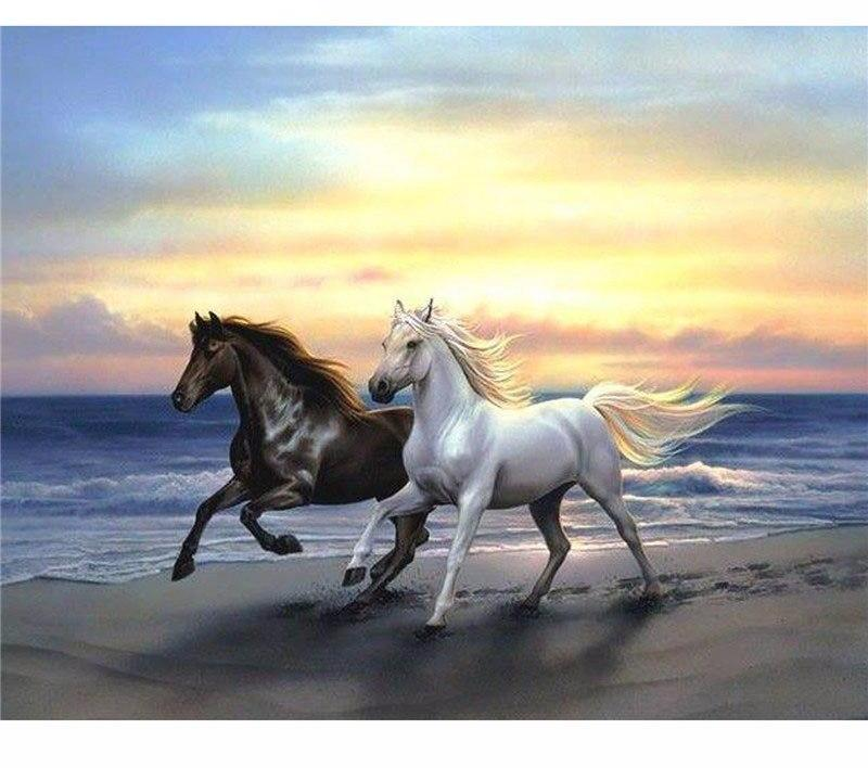 Horses Running 5D DIY Paint By Diamond Kit
