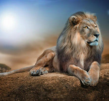 Desert Lion 5D DIY Paint By Diamonds Kit - Paint by Diamond