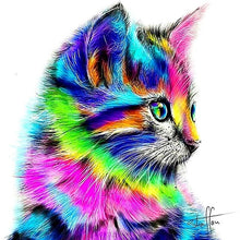 Abstract Multi-Color Cat 5D DIY Paint By Diamond Kit - Paint by Diamond