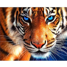 Charming Tiger 5D DIY Paint By Diamond Kit - Paint by Diamond