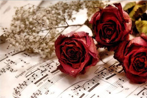 Red Roses & Music Notes 5D DIY Paint By Diamond Kit