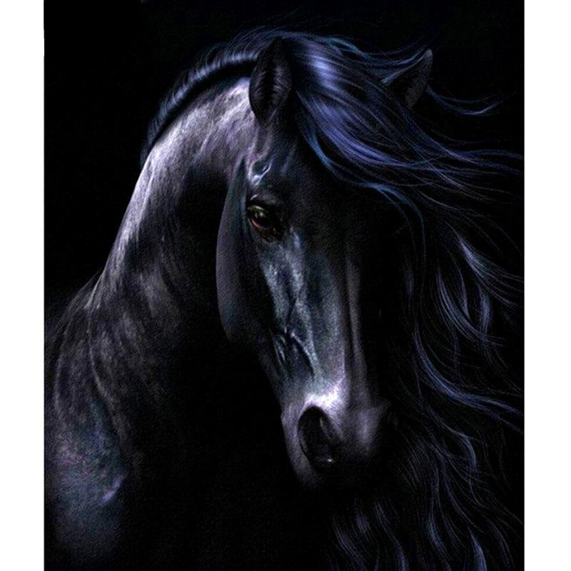 Black Horse 5D DIY Paint By Diamond Kit
