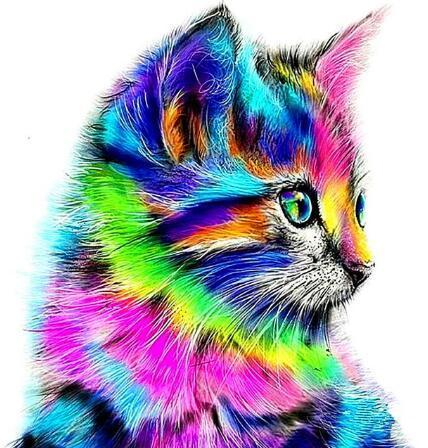 Rainbow Kitten 5D DIY Paint By Diamond Kit - Paint by Diamond