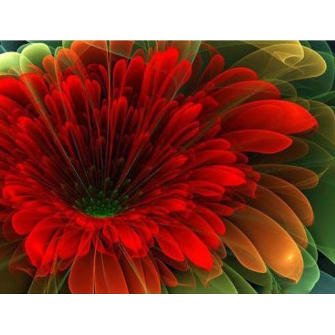 Red Daisy 5D DIY Paint By Diamond Kit - Paint by Diamond