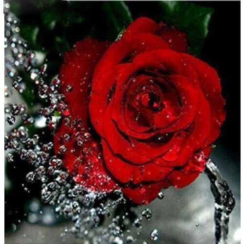 Water Droplet Rose 5D DIY Paint By Diamond Kit