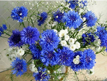 White & Blue Flowers 5D DIY Paint By Diamond Kit