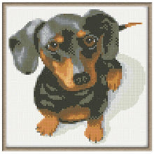 Adorable Dog 5D DIY Paint By Diamond Kit