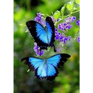 Blue Bright Butterfly 5D DIY Paint By Diamond Kit - Paint by Diamond