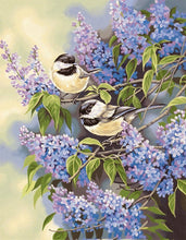 Colored Birds Paint By Diamond Kit