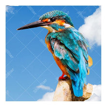 Kingfisher 5D DIY Paint By Diamond Kit