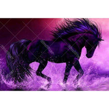 Majestic Dark Horse 5D DIY Paint By Diamond Kit