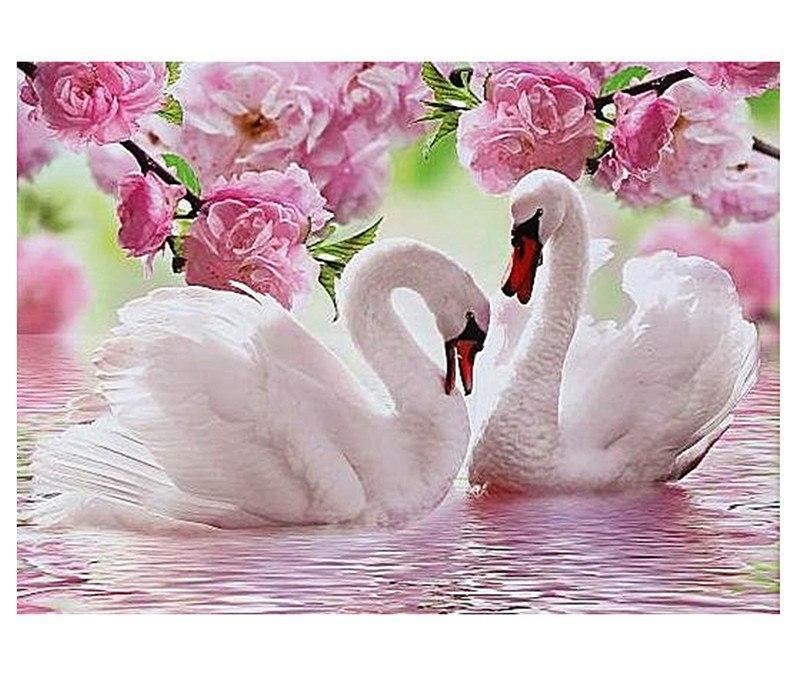 Swan 5D DIY Paint By Diamond Kit