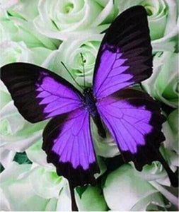 Purple Butterflies 5D DIY Paint By Diamond Kit