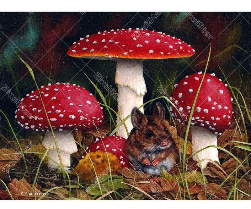 Mushroom Jungle 5D DIY Paint By Diamond Kit