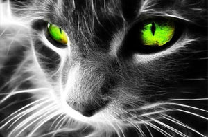 Green Eyed Cat  5D DIY Paint By Diamond Kit
