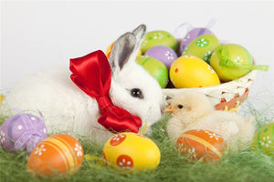 Easter Bunny And Chick 5D DIY Paint By Diamond Kit