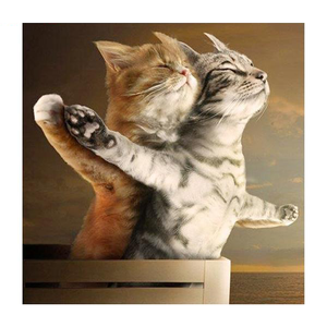 Titanic Cats 5D DIY Paint By Diamond Kit