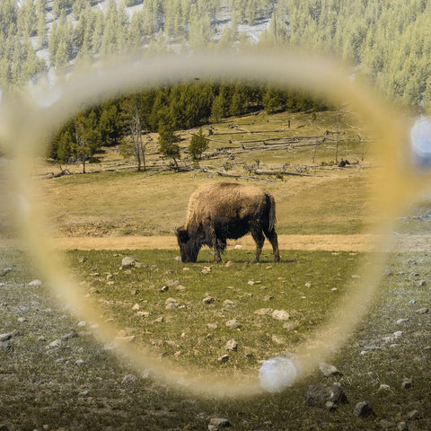 Yellowstone as seen through the lenses of Hatfield by Jacques Marie Mage