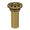 CARSON Grid Drain Polished Brass