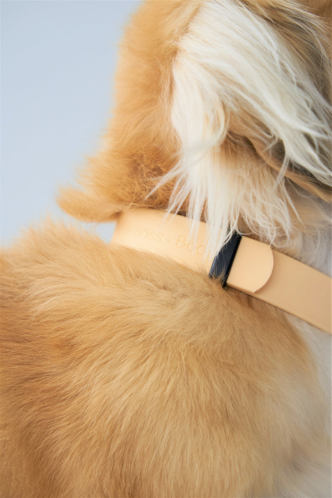Beige  - Waterproof Collar