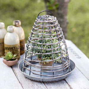 Bee Skep Wire Cloche with Base