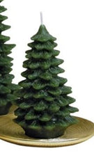 "Load image into Gallery viewer, Spruce Tree 6"" Candle"
