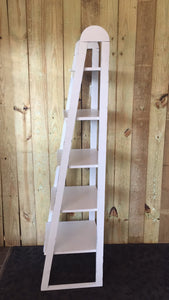 5 Shelf Ladder