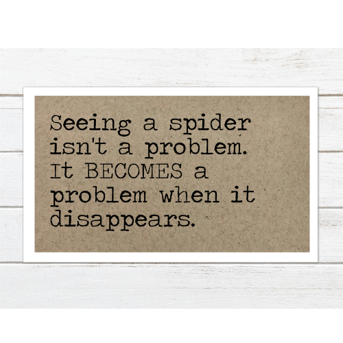 Seeing a Spider - Magnet