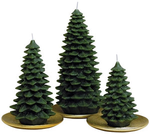 "Spruce Tree 6"" Candle"