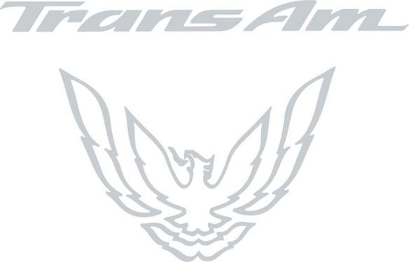 Silver Rear Tail Light Graphic Decal Fits 1993-97 Pontiac Firebird Trans Am #transam