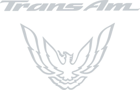 Silver Metallic Rear Tail Light Decal Fits Pontiac Trans Am Firebird Formula - 1993 to 1997 Style Bird