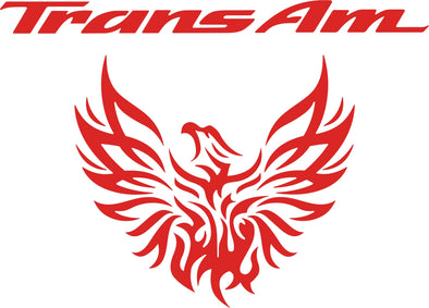 Pontiac Firebird Trans AM Custom Tribal Tail Light Filler Graphic Decal 1993-02
