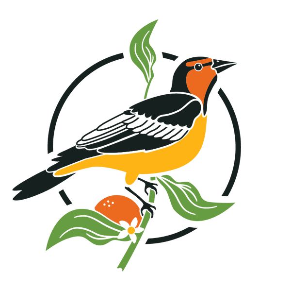 Welcome to Perch Birding!