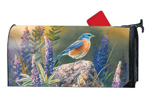 MailWrap with bluebird sitting on rock looking out over purple flowers